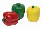 Fa játék zöldség - paprika